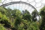 Inside the Biome for tropically humid climate zones