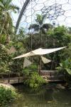 Im Inneren des Gewächshauses für tropisch-feuchte Klimazonen