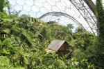 Kleine Holzhütte im Gewächshauses für tropisch-feuchte Klimazonen