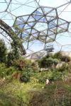 Im Inneren des Gewächshauses für subtropisch-trockene und mediterrane Klimazonen