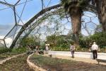 Inside the Biome for subtropic and Mediterranean climate zones