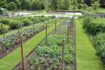 Gardens of Balmoral Castle
