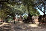 Ruinen des Wat Phra Si Sanphet in Ayutthaya