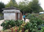 Gärten hinter den Häusern für die Arbeiter und ihre Familien